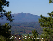 Shawangunk nature photo gallery