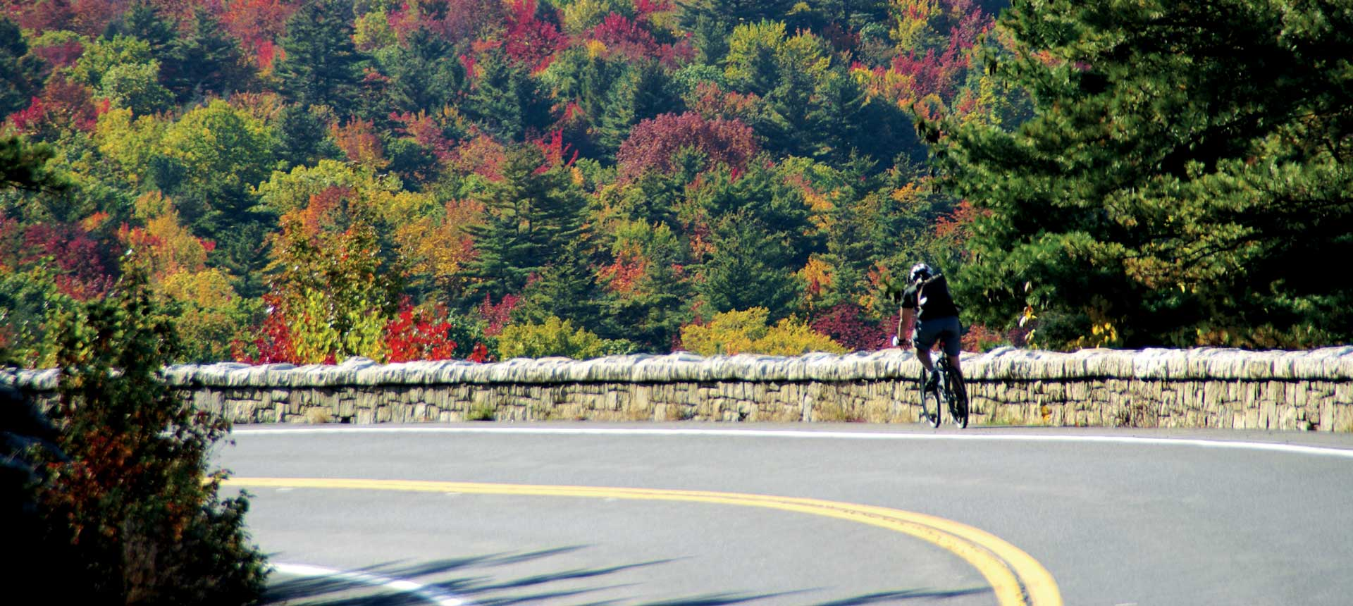 Bicyclist on Route 299